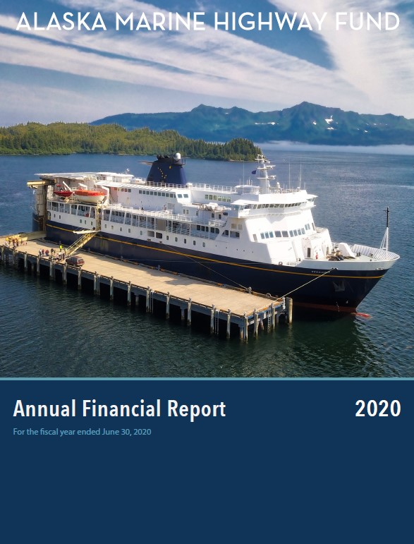 Screenshot of the 2020 Annual Financial Report
