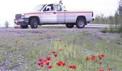 Vehicle Recalls/Bulletins , State Equipment Fleet, Transportation