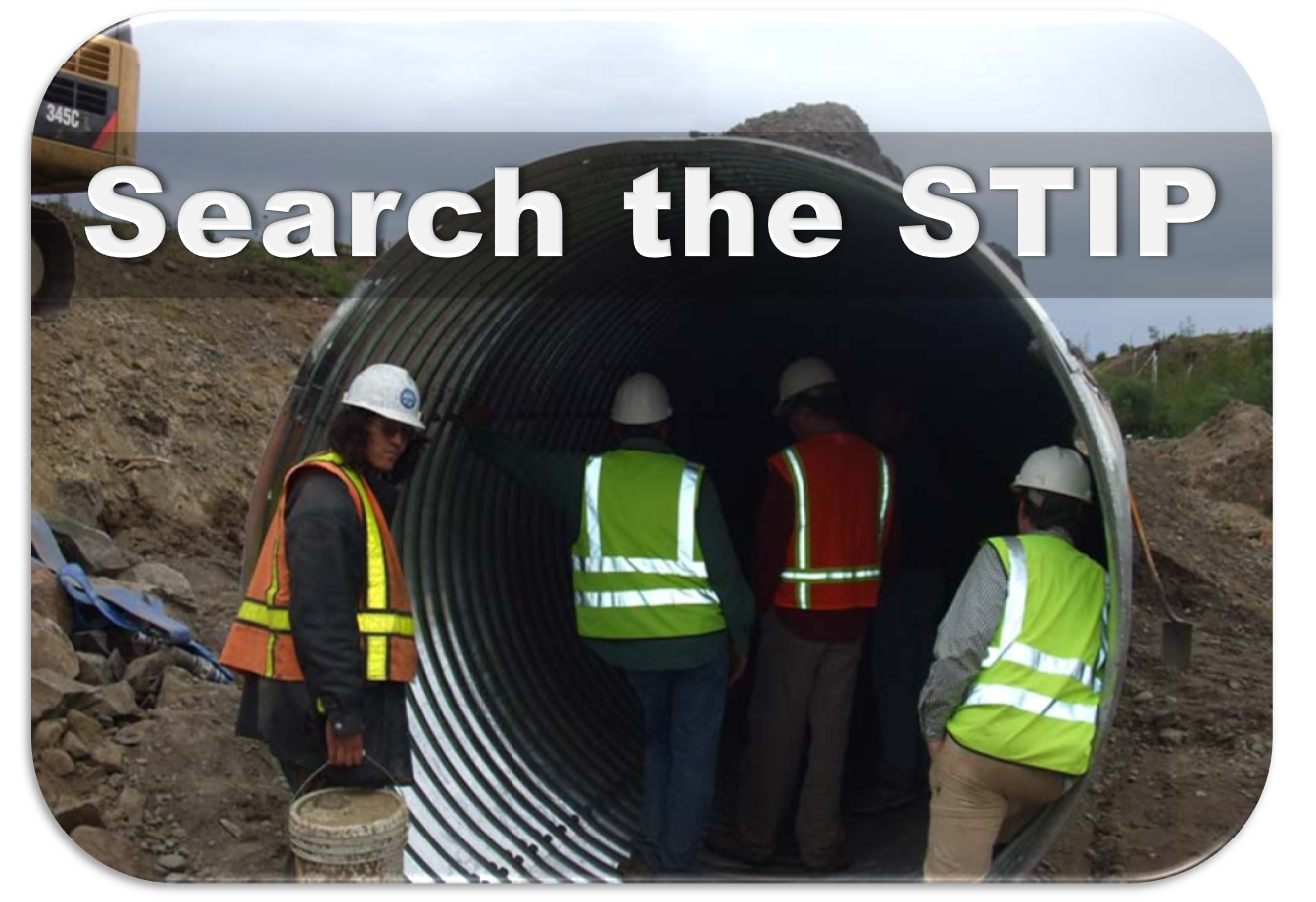 STIP project Search link